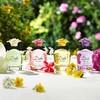 Dolce & Gabbana Dolce Shine Eau De Parfum (50 ml)