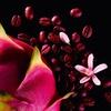 Yves Saint Laurent Black Opium Neon Eau De Parfum (30 ml)