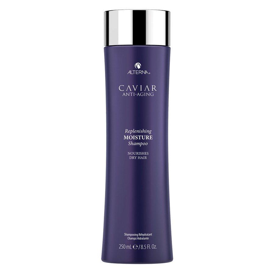 Alterna Replenishing Moisture Shampoo (250 ml)