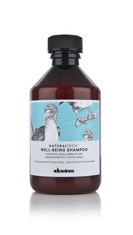 Davines NATURAL TECH Well-Being Shampoo (250 ml)